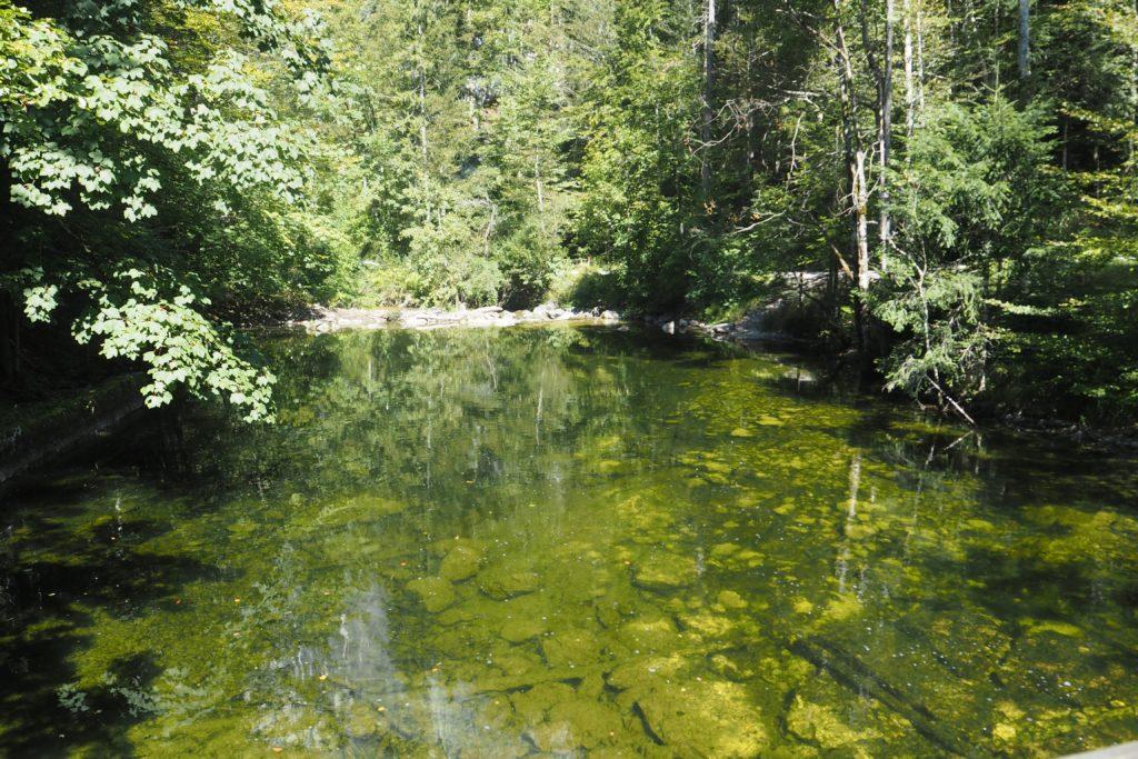 3-Seen-Tour Wanderung zum Toplitzsee 4