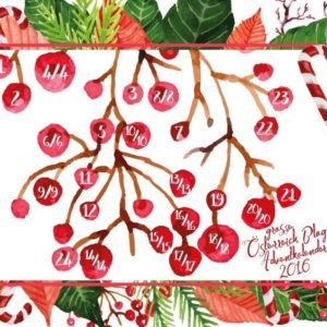 Großer Österreich Blogger Adventkalender Türchen 15